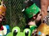 une-grenouille