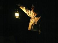 les-minuits-la-nuit-les-arbres-psy-de-l-arbre