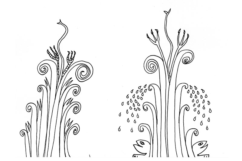 Croquis-plante