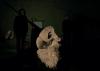 les-minuits-mariage-des-oiseaux-aigle