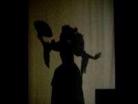 les-minuits-versailles-2008-nuit-des-musees-partie-carte