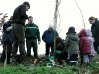les-minuits-lyceens-citoyens-planter-des-arbres