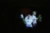 les-minuits-concert-de-noel-2014-elvis