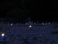 les-minuits-la-nuit-les-arbres-bougies