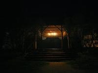 les-minuits-la-nuit-les-arbres-entree