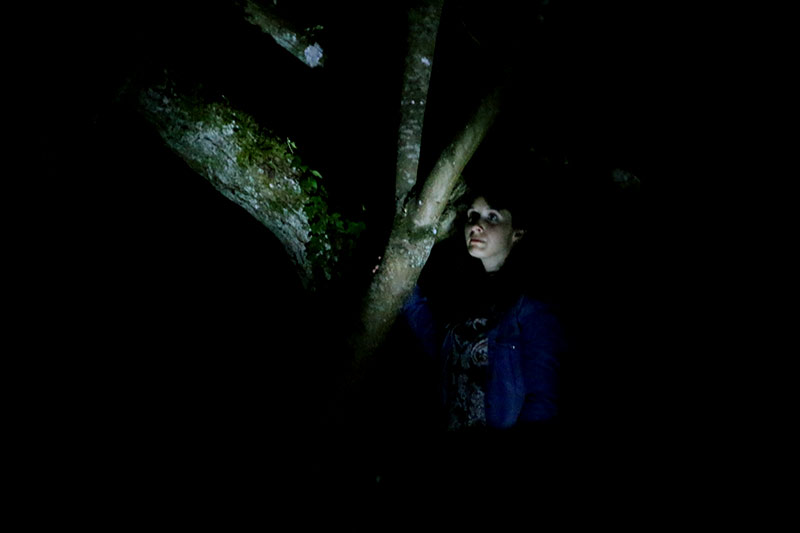 les-minuits-la-nuit-les-arbres-repetition-amour
