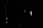 Les Minuits-Nuit dans le marais de la porte-15