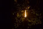 Les Minuits-Nuit dans le marais de la porte-05