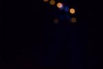 Les Minuits-Nuit dans le marais de la porte-01